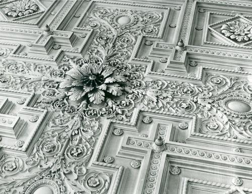 Dunedin Ceiling 1883 lowres