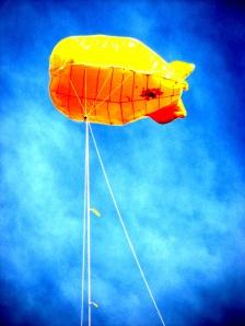 Shane McGrath (yellow blimp) 15-4-13 IMG_3188alr
