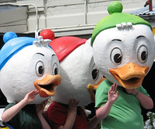 ducks 1lr IMG_3921