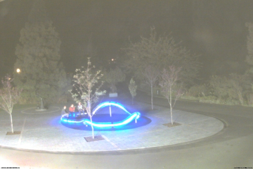Botanic Garden DCC webcam Saturday 11.1.14