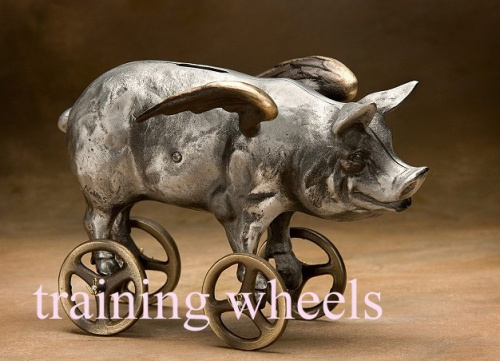 Flying Pig coin bank [awakenedaesthetic.com] 3