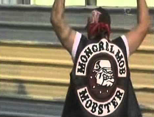 Mongrel Mob gang member [article.wn.com] 1
