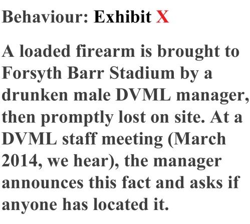 Loaded firearm 2
