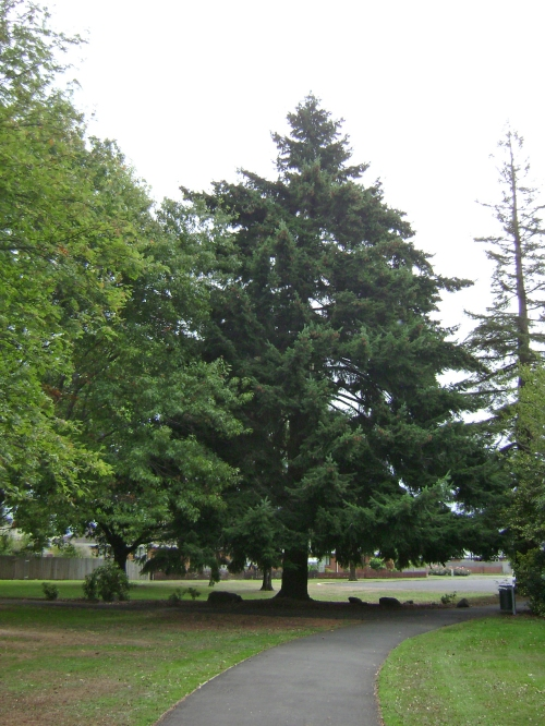 Memorial Park, Mosgiel 5.jpg
