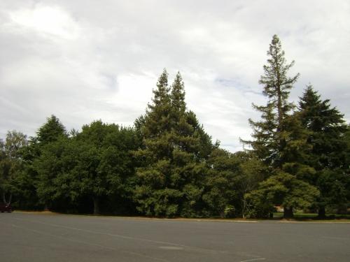Memorial Park, Mosgiel 2a
