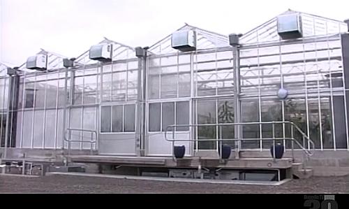 Propagation House at Dunedin Botanic Garden via Ch39