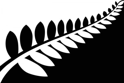 flag1 Silver Fern (Black & White)