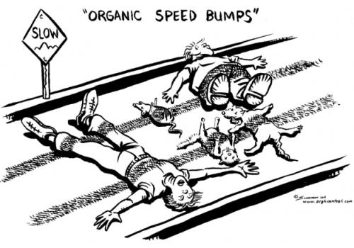 speed bumps timthumb arghcentral.com [via netsolhost.com]