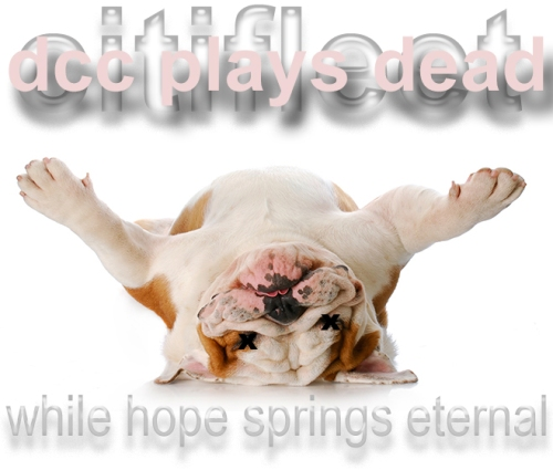 Dog Playing Dead Who should be playing dead [pixgood.com] text overlay by whatifdunedin