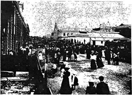 Rear of Agricultural Hall, Otago Witness, 30 Jan 1901