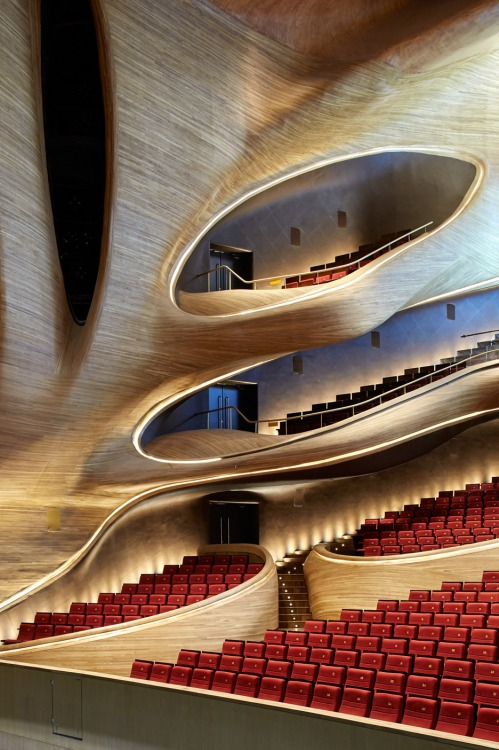 Harbin Opera House by MAD Architects_Beijing [photo Hufton + Crow]