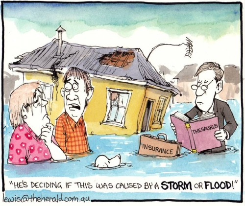 Storm or flood - Peter Lewis cartoon gallery 2015 slide 95 [Newcastle Herald - theherald.com]