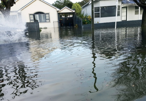 Flooding South Dunedin June 2015 photo by Paul Allen [listener.co.nz]