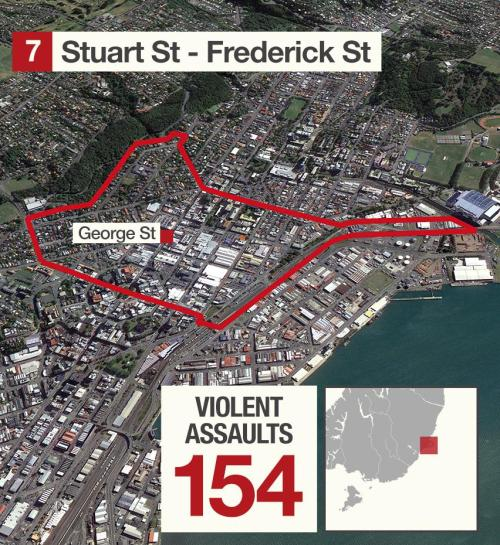 Dunedin_violence_low_02_05_7 [newshub.co.nz]