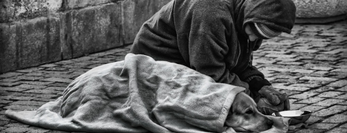 homelessness_banner - Human Rights Commission [hrc.co.nz] 1