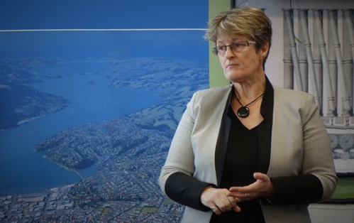 sue-bidrose-south-dunedin-a-changing-environment-radionz-co-nz-detail