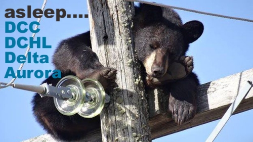 bear-sask-power-via-bbc-com-tweaked-by-whatifdunedin-1