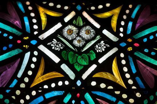 roy-miller-daisies-by-brian-miller-detail-11891061_912412288852255_1646043659992482757_n