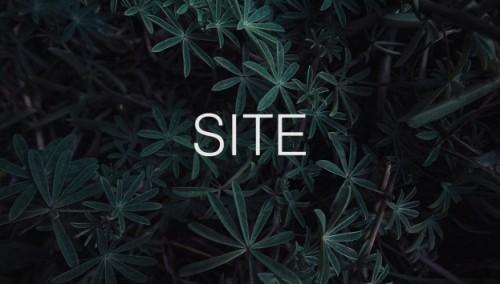 site2-10x