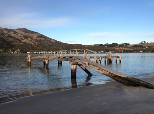 pilots-wharf-aramoana-league-dcc-report-13-10-14