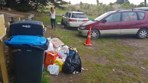 litter-6-2-17-one-nights-worth-following-bin-clearance-by-contractors-1